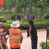 女子用垃圾桶怼绿化工是怎么回事?