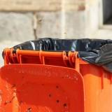 如何杀灭垃圾桶内的小苍蝇