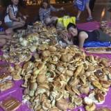 新加坡的这群人在不锈钢垃圾箱里找面包
